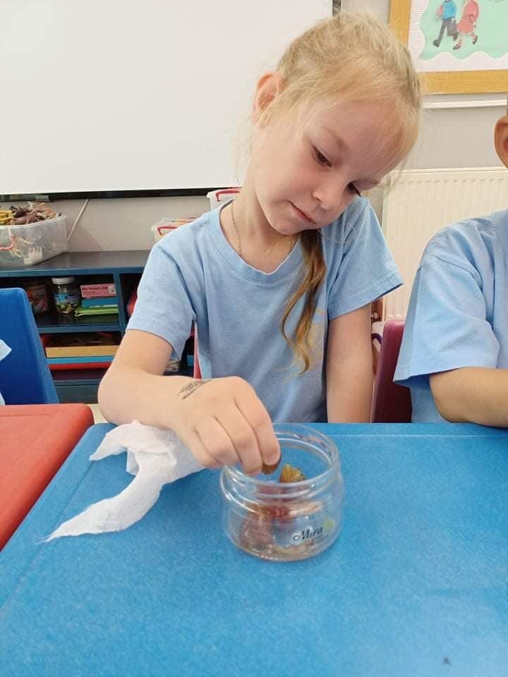 Angels-Sun-Nest-kindergarten-Cyprus